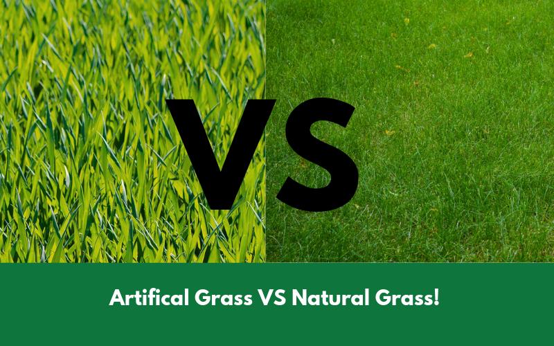 Artifical Grass VS Natural Grass!