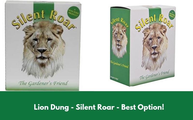 Lion Dung - Silent Roar
