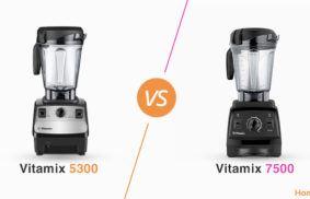 Vitamix 5300 vs. 7500