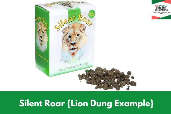 Silent Roar Lion Dung Example