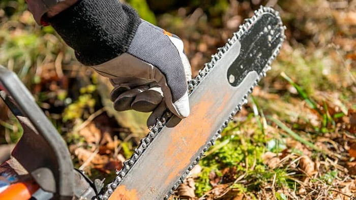 Best Chainsaw Gloves