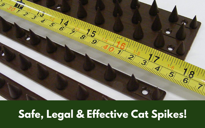 Safe, Legal & Effective Cat Spikes!