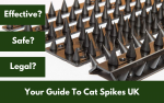 Your Guide To Cat Spikes UK