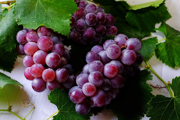 Grow vine Fruit
