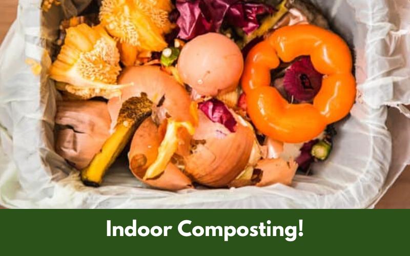 Indoor Composting!
