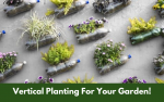 Vertical Planting For Your Garden!
