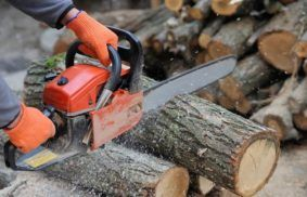 Type of Chainsaws