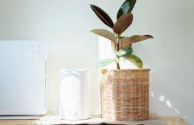 How Does An Air Ionizer Work