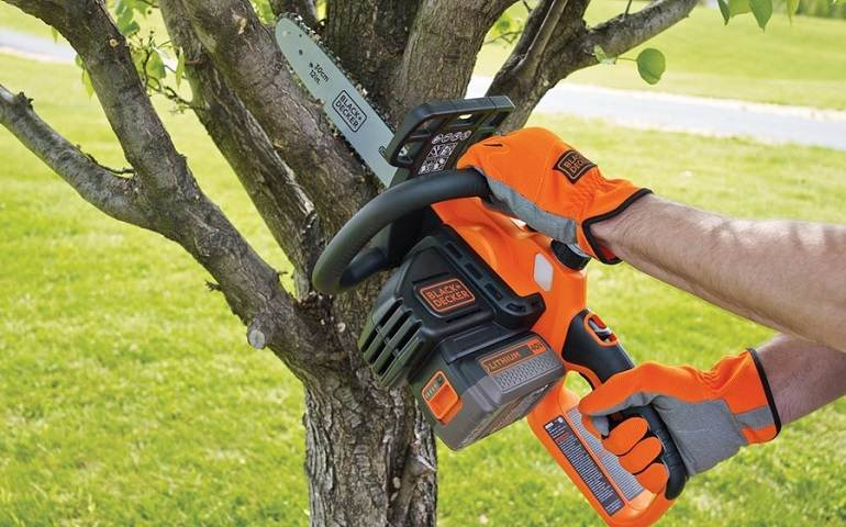 How to Buy the Best Battery Chainsaws