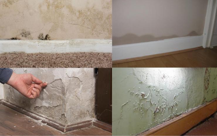 Examples of rising damp