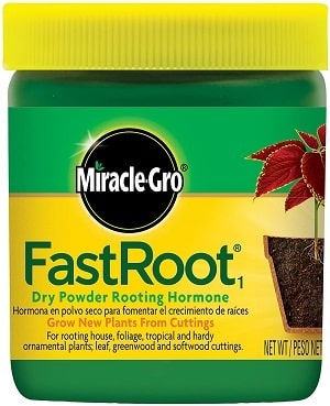 Miracle-Gro FastRoot 1