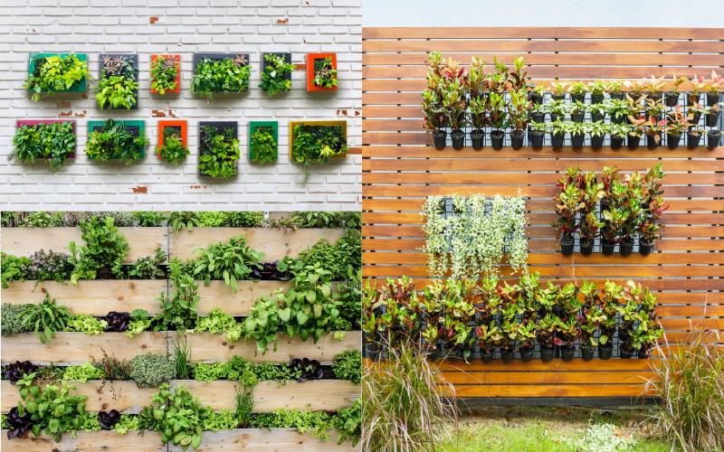 Outdoor Vertical Gardening - Example